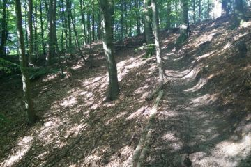 Bjerge Skov - MTB Spor