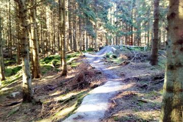 Trailcenter Bornholm - Almindingen