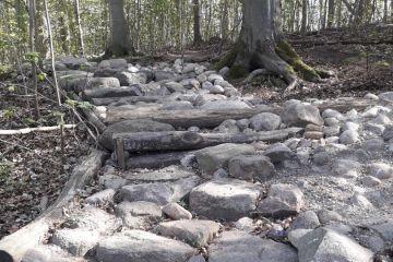 Djævlesporet i Lystrup Skov - MTB Spor