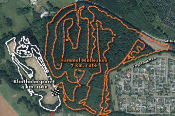 Hammel - MTB Spor