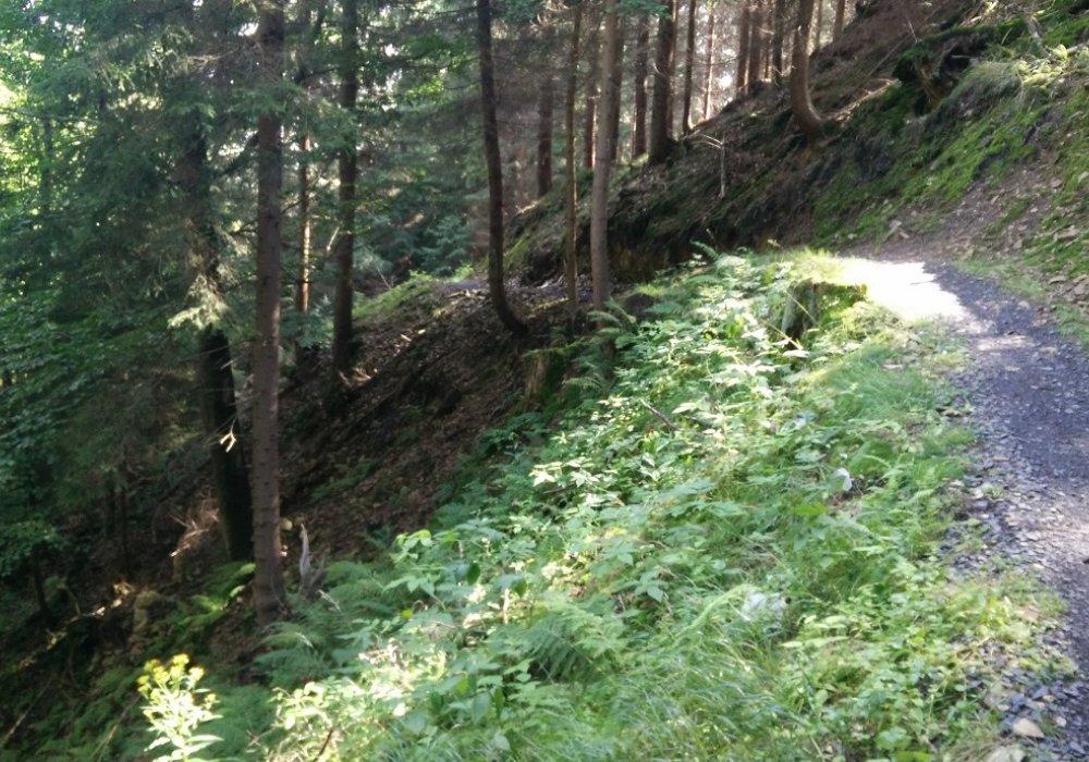 På mountainbike i Tjekkiet, Pod Smrkem